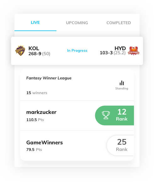 fantasy sports website design with real time data by Vinfotech